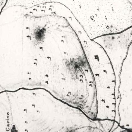 5 - A.S.F. Piante (Confini), filza 155, sez. VIII n° 2